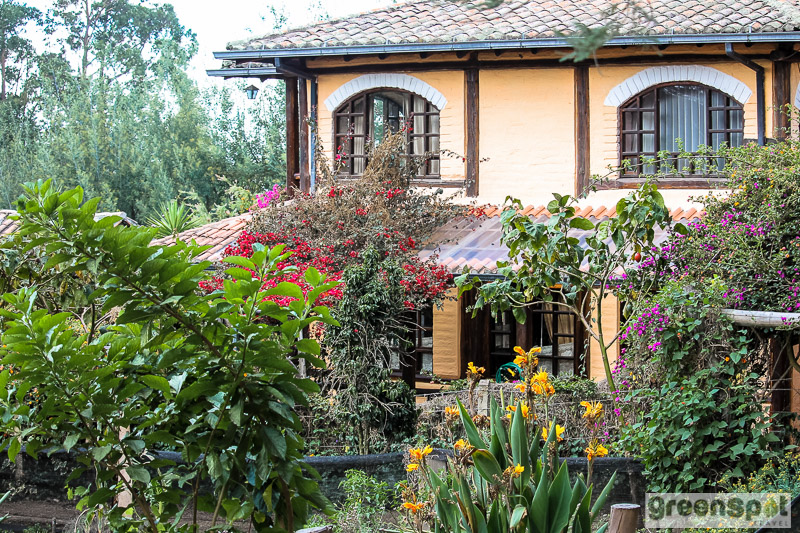 Ecuadorian hacienda